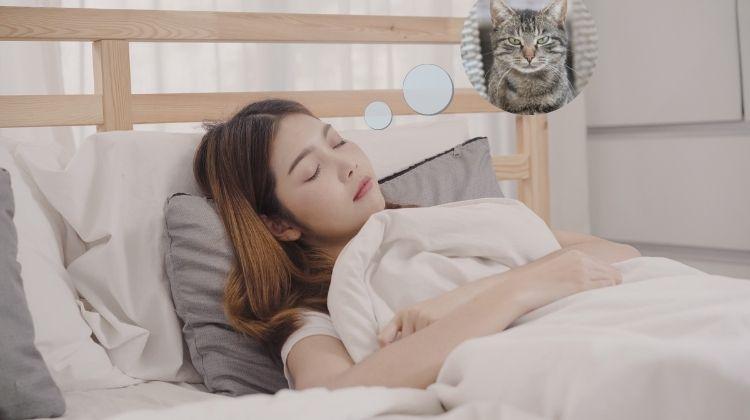 בחורה ישנה וחולמת על חתול